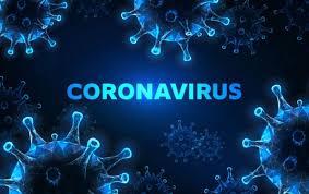Sumber: https://hits.grid.id/read/482111879/jadi-pembunuh-no-1-umat-manusia-siapa-sangka-virus-corona-ternyata-justru-bawa-angin-surga-beri-kedamaian-bagi-makhluk-hidup-ini?page=all